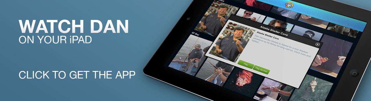 iPad_Header