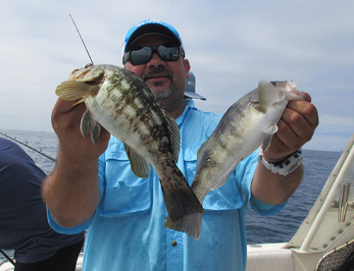 Today Private Charter Fishing Report