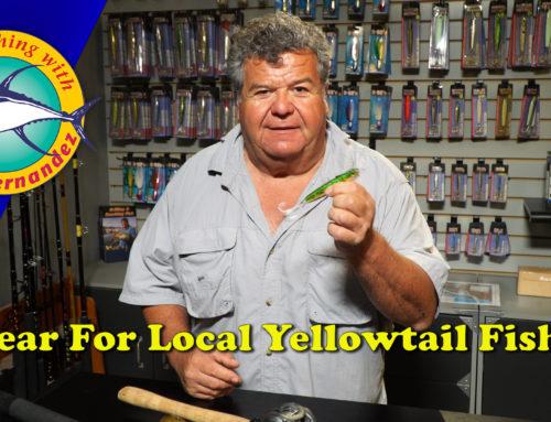 Gear For Local Yellowtail Fishing