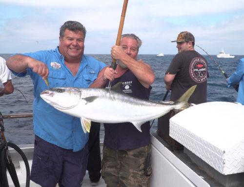 Dan's July Fishing Charters